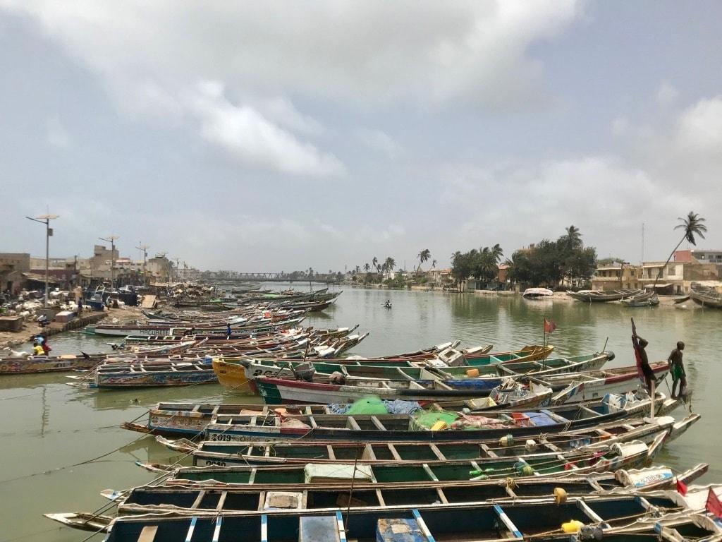 Le piroghe dei pescatori sul fiume Senegal
