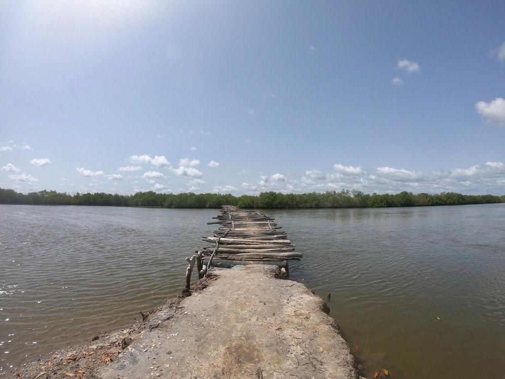 Un ponte di legno su una ramificazione del fiume Casamance