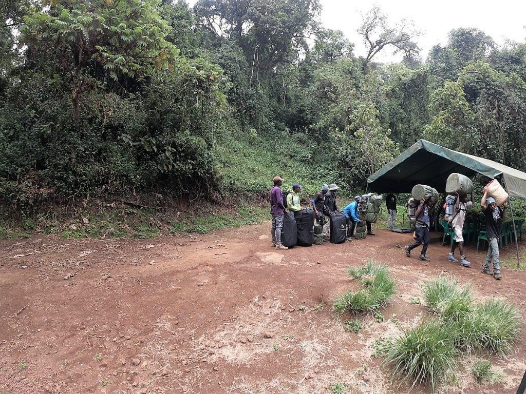 porter kilimangiaro lemosho route