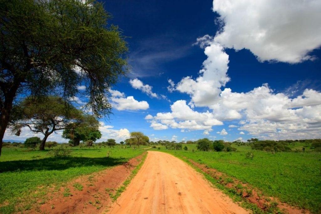 parco tarangire tanzania