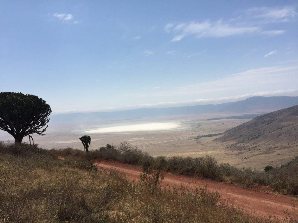 ngorongoro tanzania a gennaio