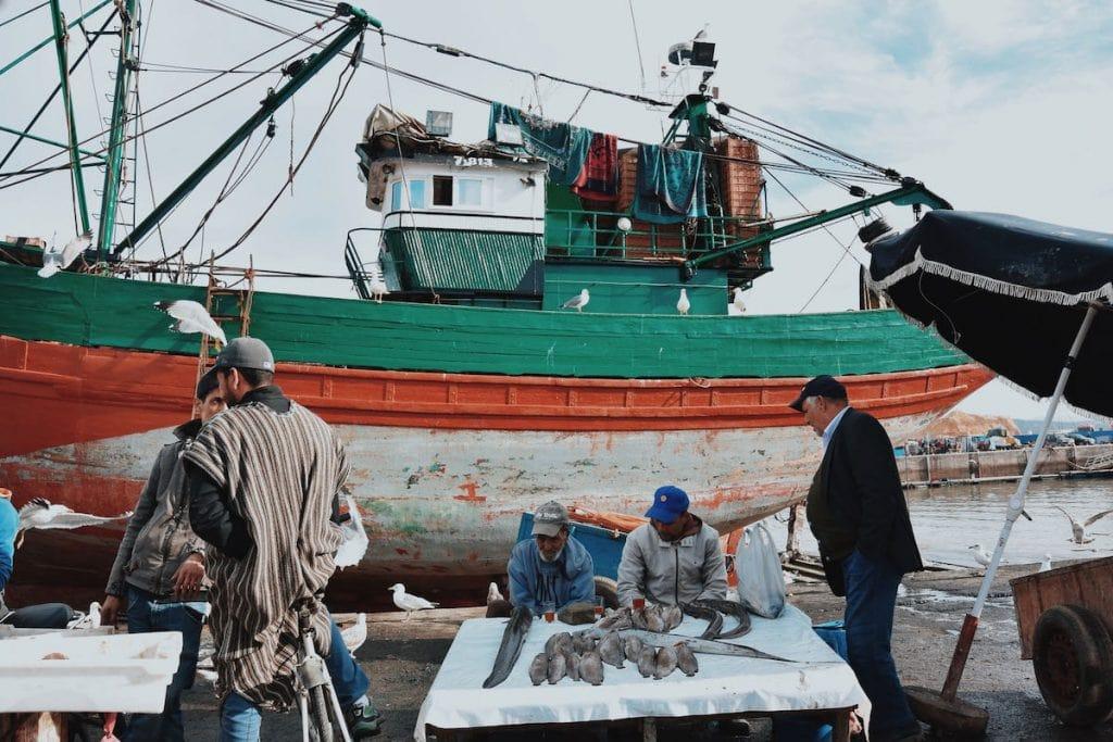 cosa vedere a essaouira pescatori