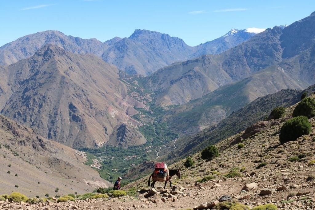 trekking in marocco alto atlante