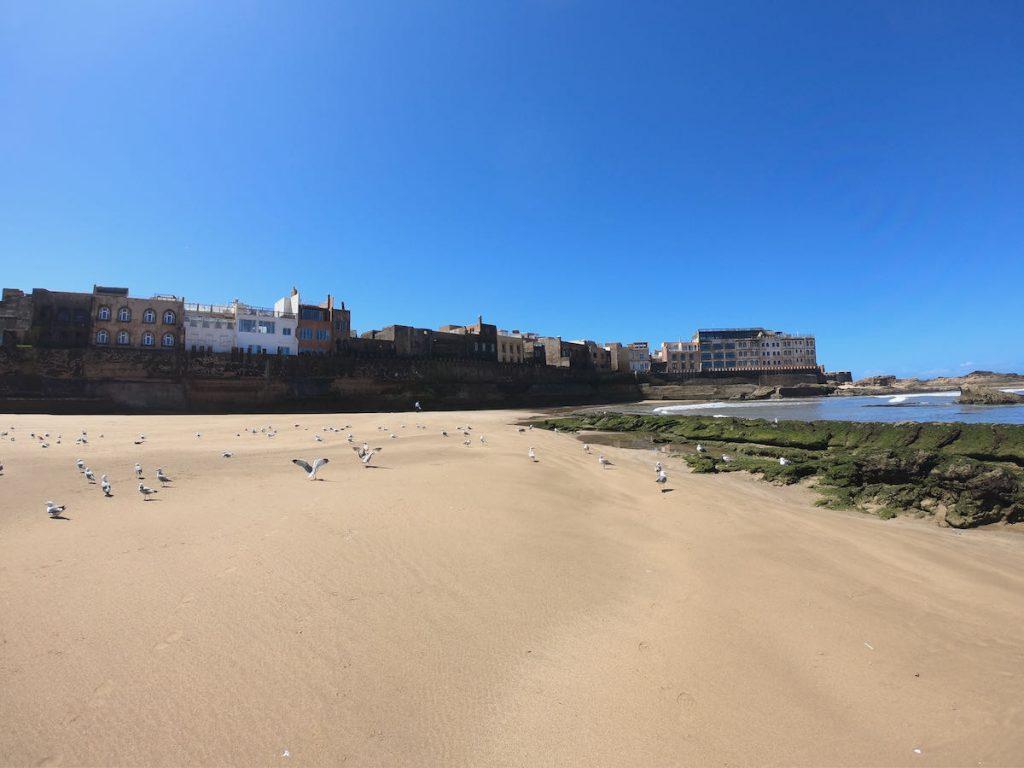 essaouira spiaggia nord
