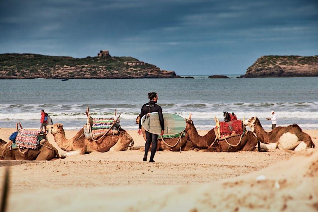 essaouira surf camp